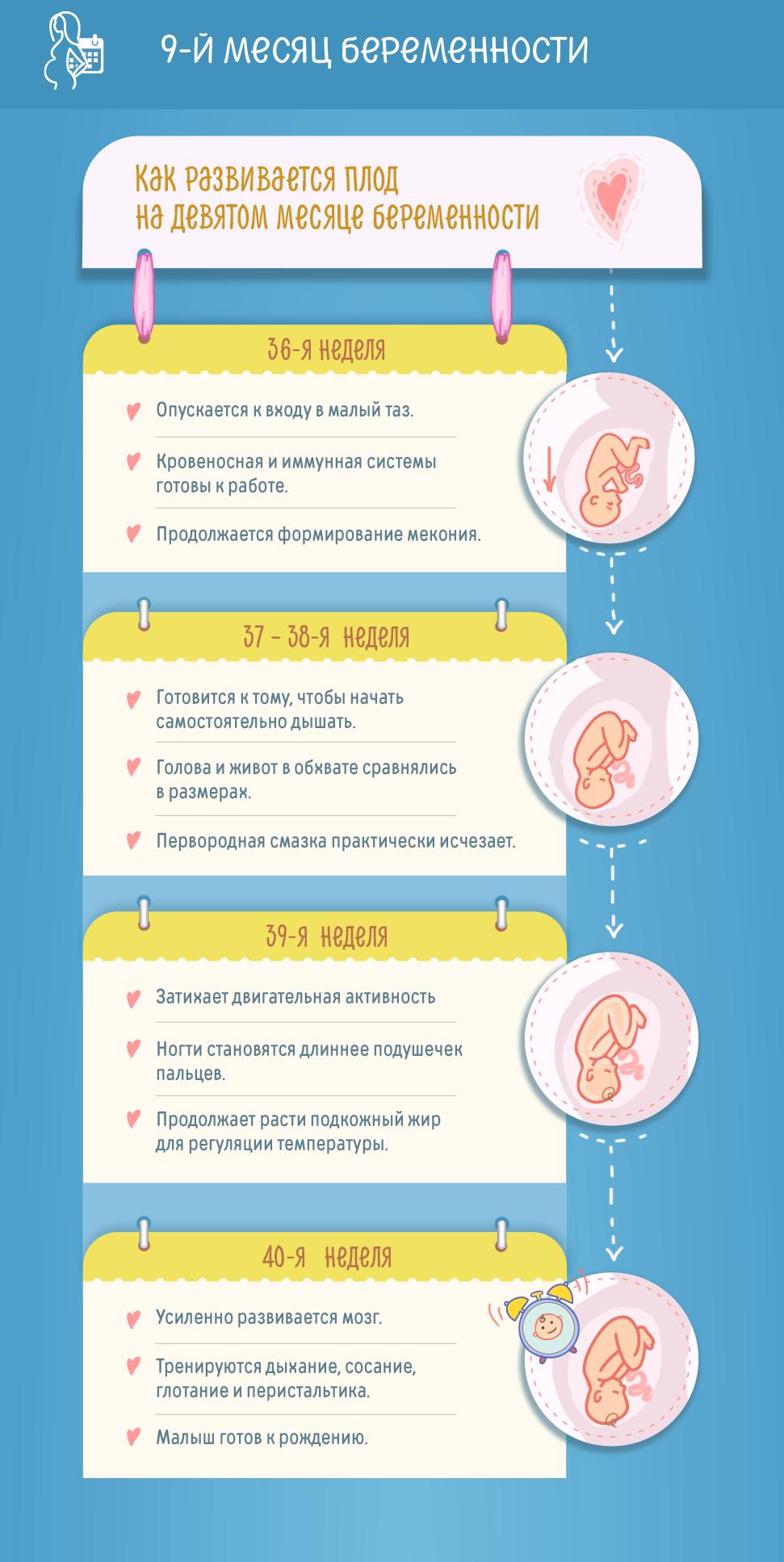 9-й месяц беременности: изменения в женском организме и развитие плода по неделям
