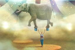 Быть цирковым силачом нелегко, быть мамой еще труднее!
