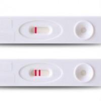 Первый месяц беременности — ощущения, анализы, развитие плода