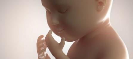 9-й месяц беременности: изменения в женском организме и развитие плода