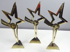 Награды и премии «Агуши»